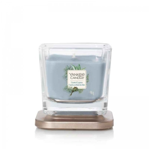 Yankee Candle Coastal Cypress Elevation Coll. W/Plt Lid - mała świeca zapachowa - e-candlelove