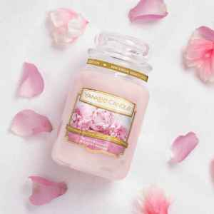 yankee-candle-blush-bouquet-candlelove